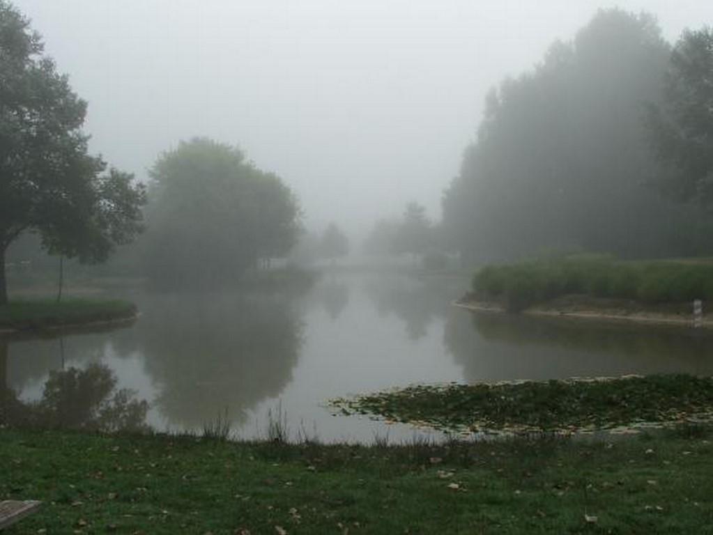 Parc de Loisir_Brume  (4)